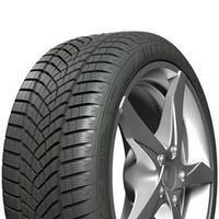 Goodyear UG PerformanceG1