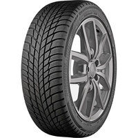 Bridgestone DrGuardWinter